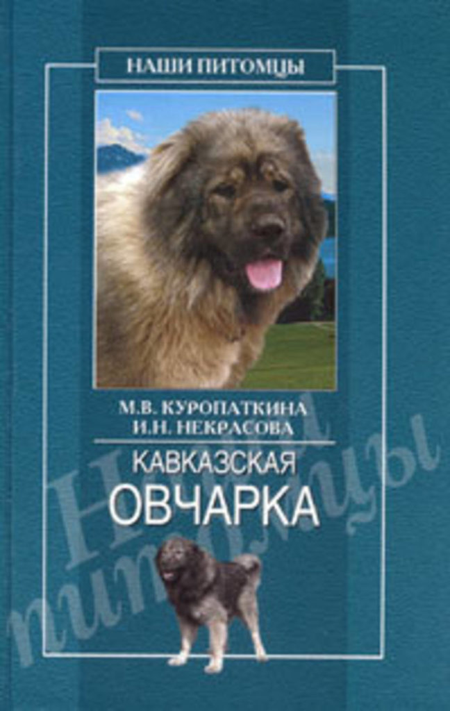 кавказская овчарка куропаткина