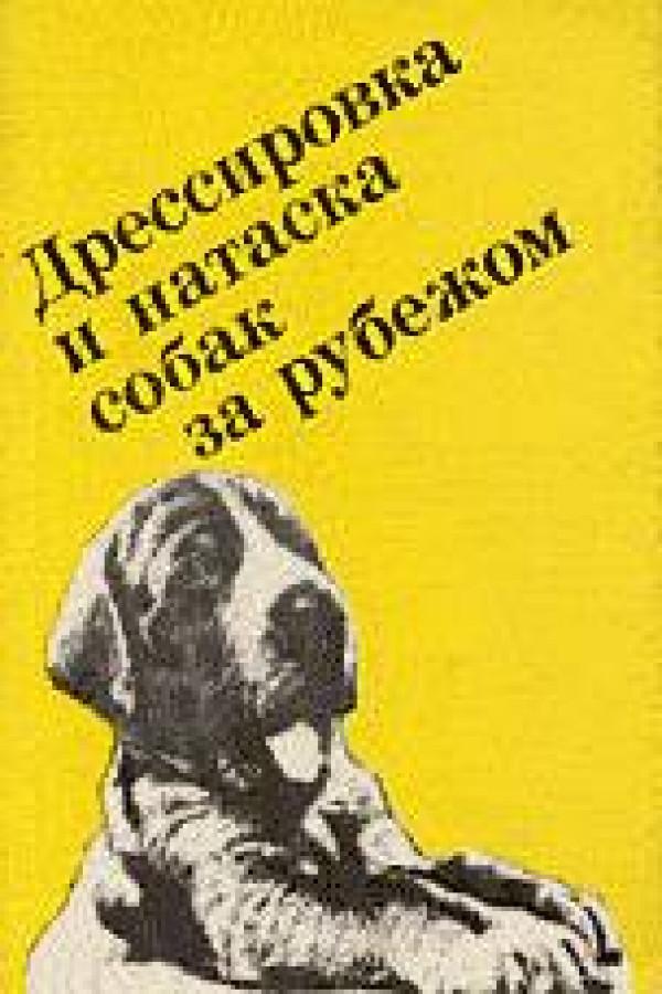 дрессировка и натаска охотничьей собаки