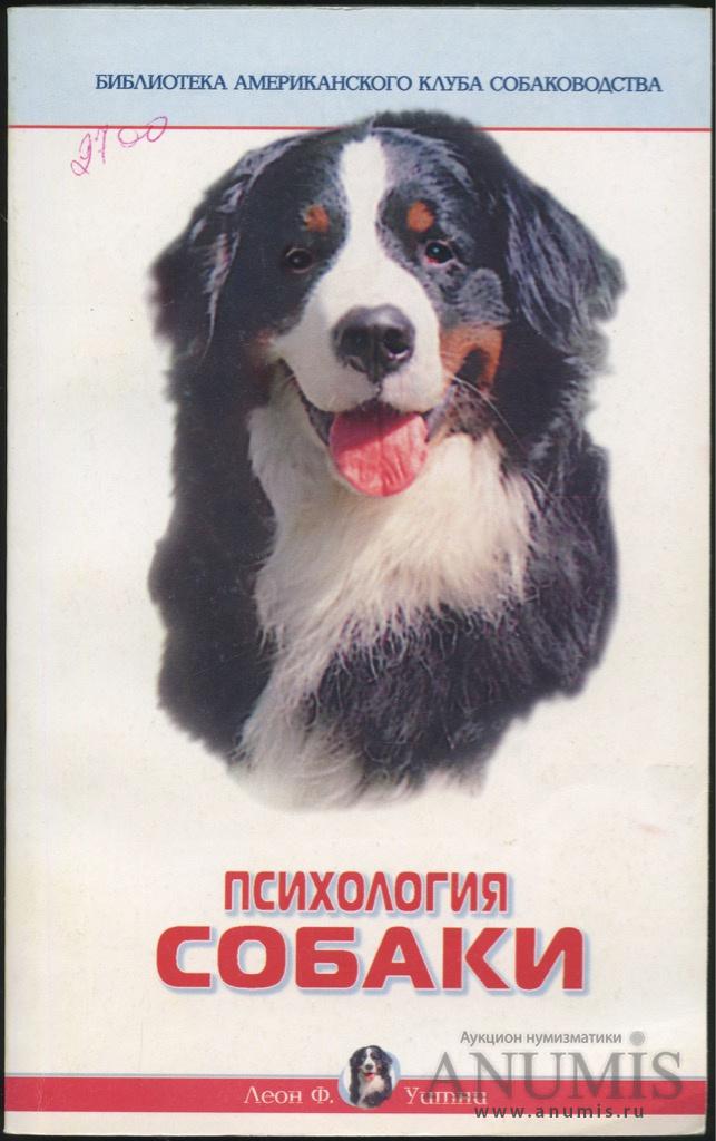 основы дрессировки собаки